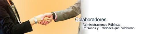 Asesoria fiscal, Colaborador social